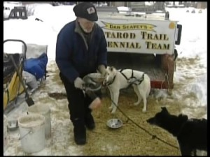 Youngest Musher Wins