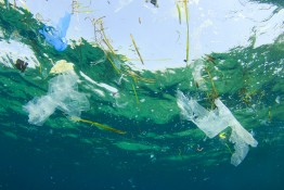 Environmental problem: Plastic bag pollution in ocean
