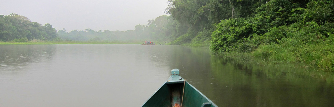 Five Crazy Awesome Facts About the Amazon Rainforest
