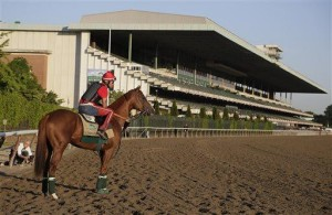 California Chrome's story may never repeat