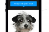 feature-image-finding-fido