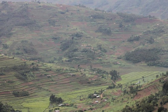 Rwanda- the Land of 1,000 Hills… It's certainly true to its name.