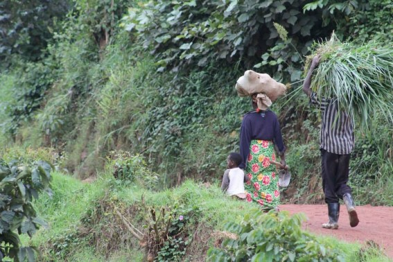 A family walks along the roadside, after a day's work in the tea fields.