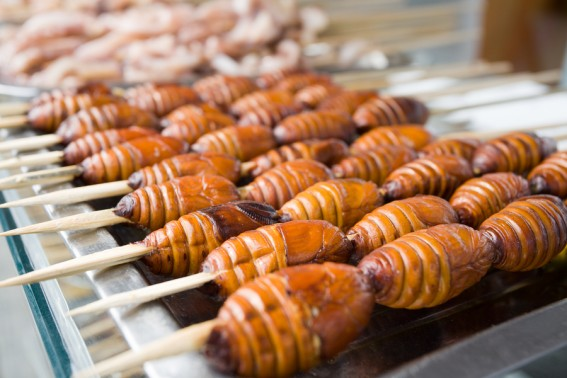 Skewered silkworms are a delicacy in of China and Asia.