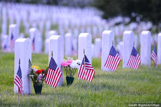 bigstock-Arlington-National-Cemetery-wi-credit