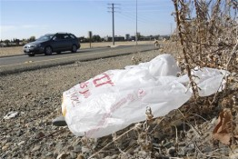 FILE-In this file photo taken Friday, Oct. 25, 2013, a plastic shopping bag liters the roadside in Sacramento, Calif. Gov. Jerry Brown has signed legislation on Tuesday, Sept. 30, 2014 imposing the nation's first statewide ban on single-use plastic bags.  (AP Photo/Rich Pedroncelli)